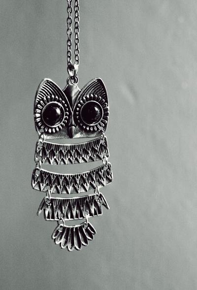 -- Owlie -- by AshleyxBrooke
