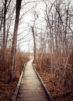 -- Follow Me -- by AshleyxBrooke