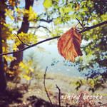 -- Like a Leaf on the Wind-