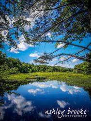 -- Blue Skies --
