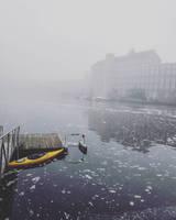 -- Adventures into the Fog --