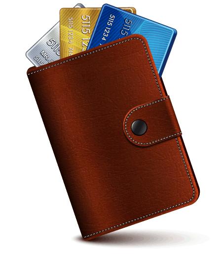 Wallet Icon by lazunov