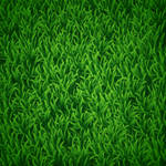 How to Create Vector Grass in Illustrator