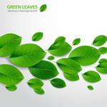 Create Realistic Vector Leaves - Ai TUT