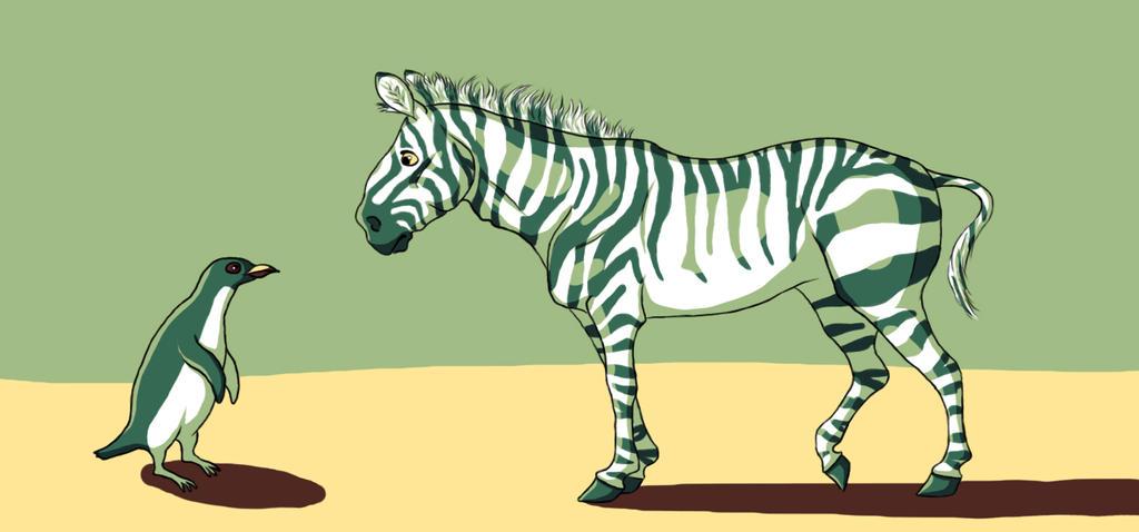 Rencontre zebre