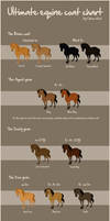 The ultimate equine coat chart