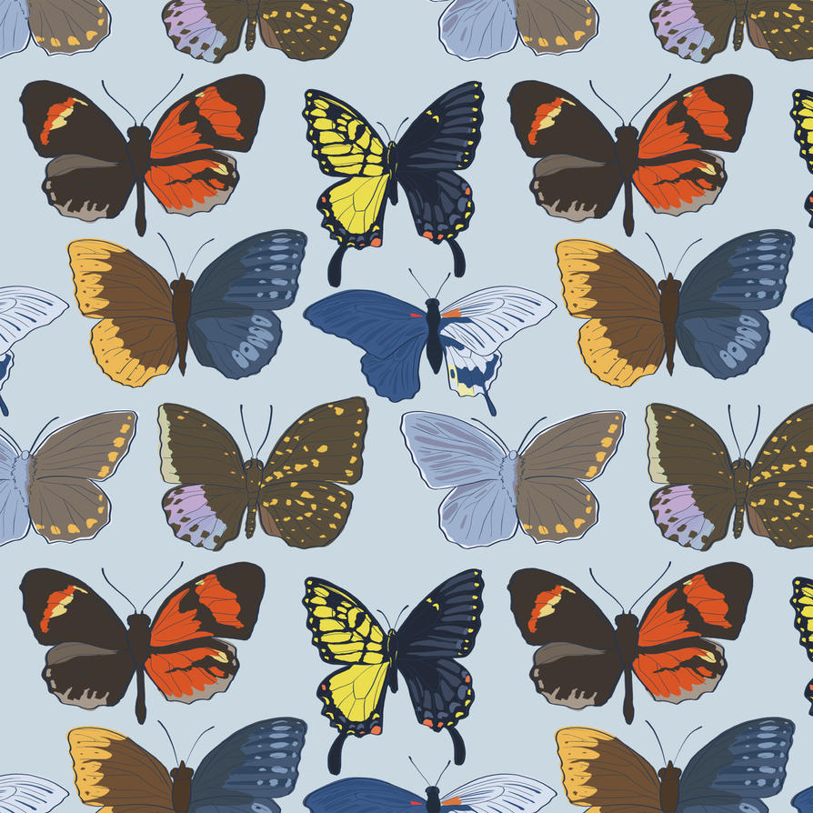 Gynandromorph Butterfly by Citron--Vert