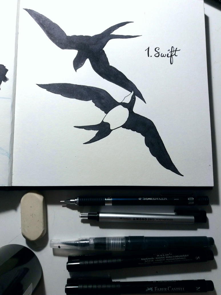 Inktober 2017 1. Swift by Citron--Vert