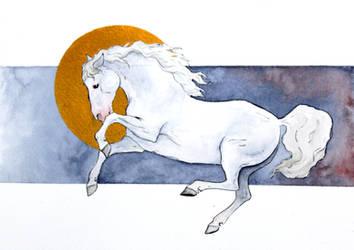 White Horse by Citron--Vert