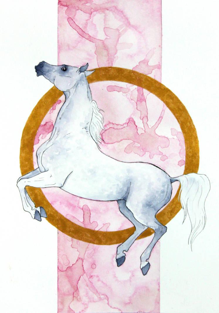 Grey Arabian Horse by Citron--Vert