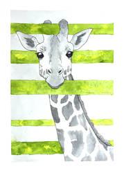 Giraffe by Citron--Vert