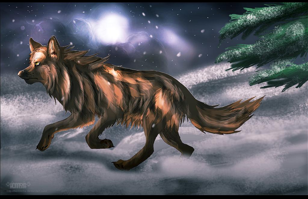 Run into snow by Honniska