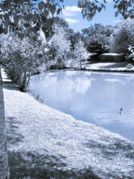 Water Scenery _ All White