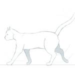 - Mr. Trippy Cat - by vielmond