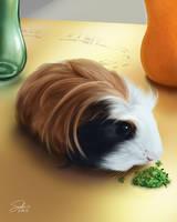 Cookie Portrait by CierinBlue