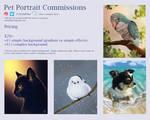 Art Commissions 2021