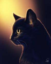 Black Cat Jinx Portrait
