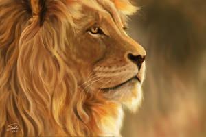 Lion Portrait by CierinBlue