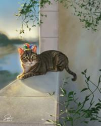 Twatus the Cat
