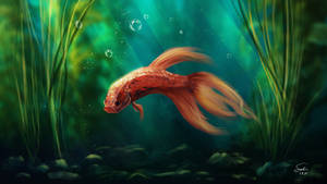 Zuko Betta Fish Portrait by CierinBlue