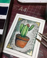 Cactus by IvoryMoonchild