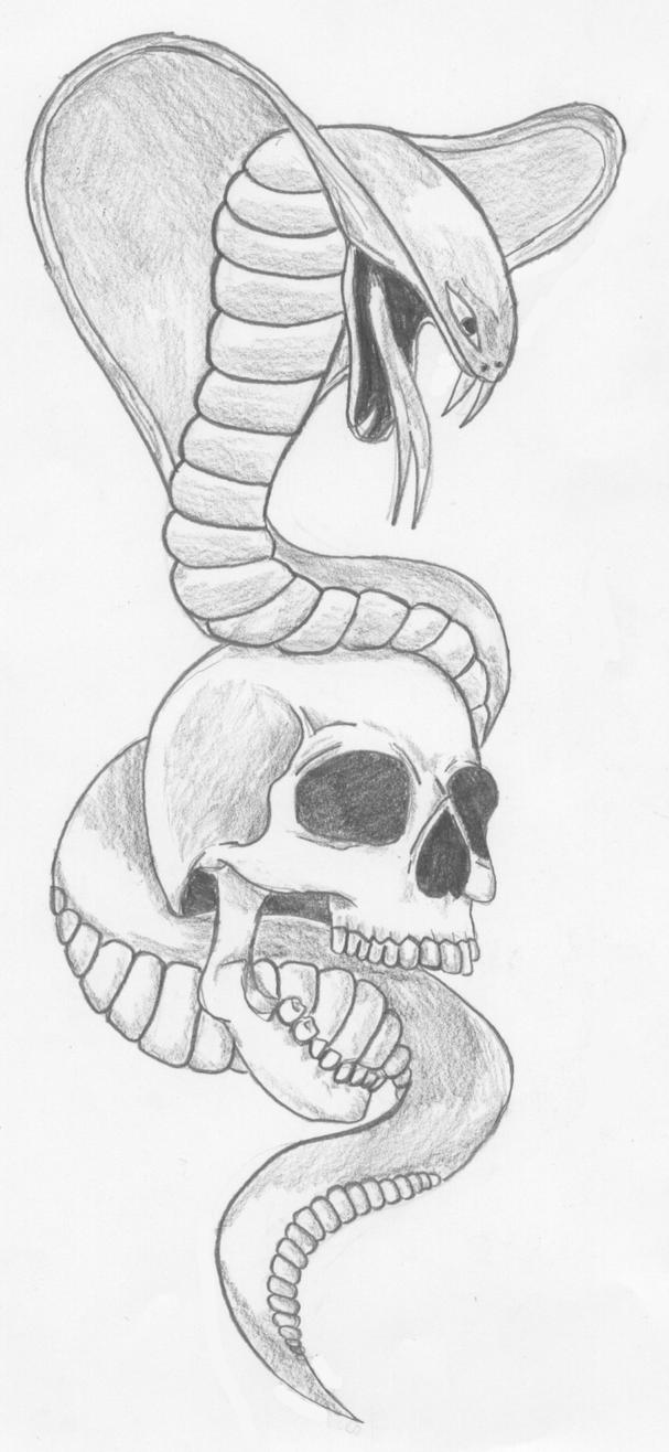 snake and skull tattoo by zzzisch on DeviantArt
