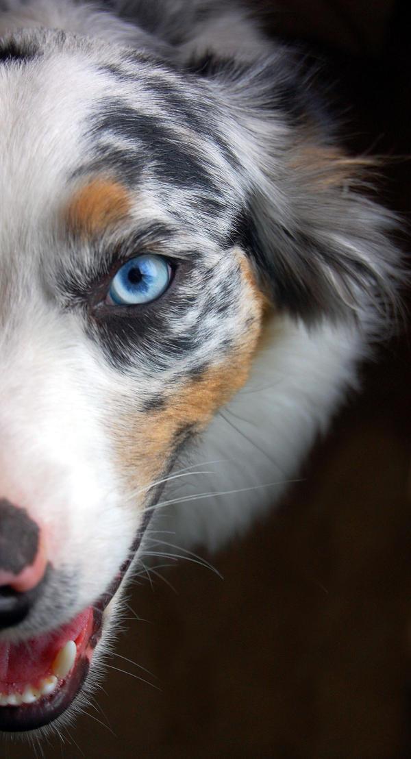 Her Eye's by MackenzieClaire