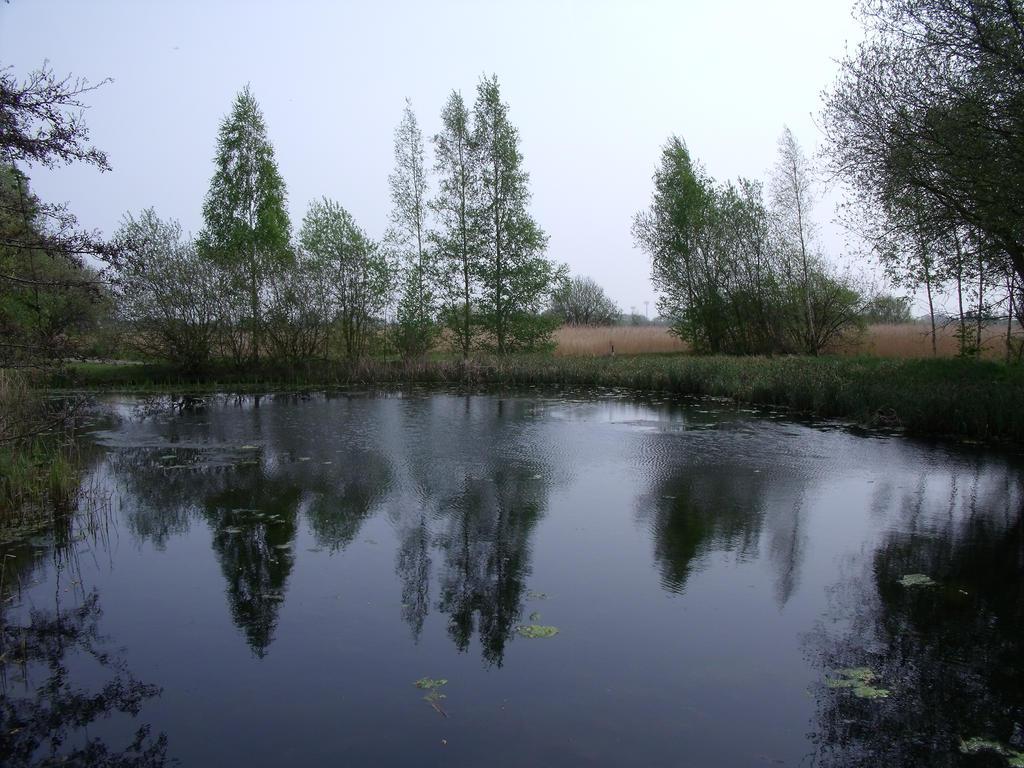 London Wetland Center 01 by Slizergiy