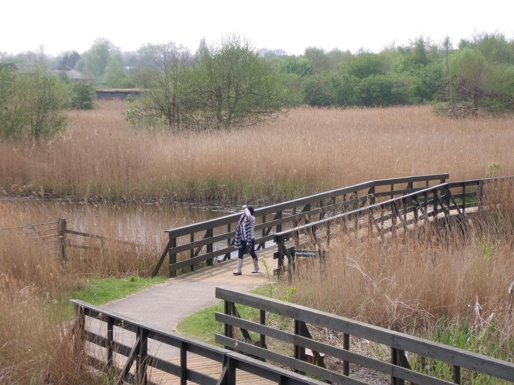 London Wetland Center 02 by Slizergiy