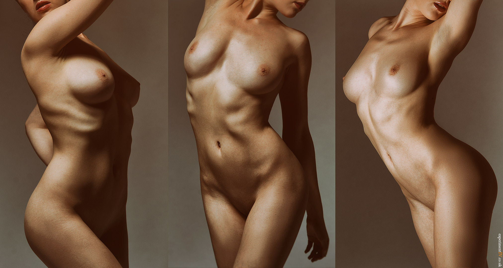 Bronzed Torsos by experiment-iv