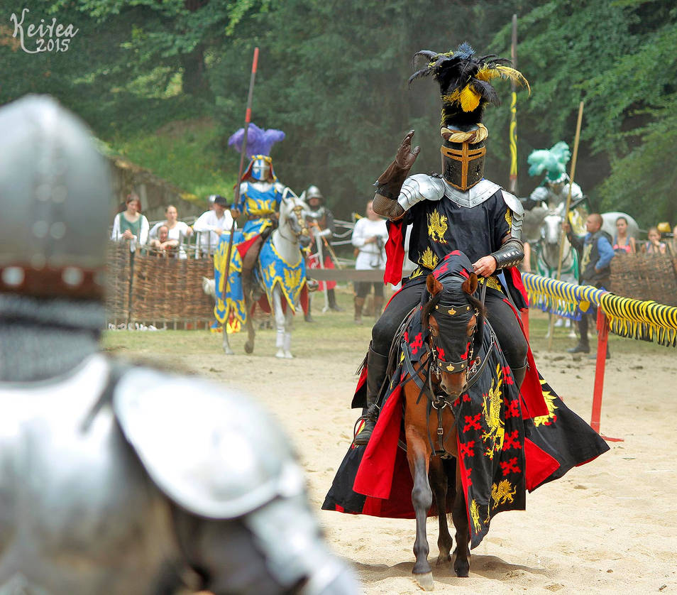 Greeting knight