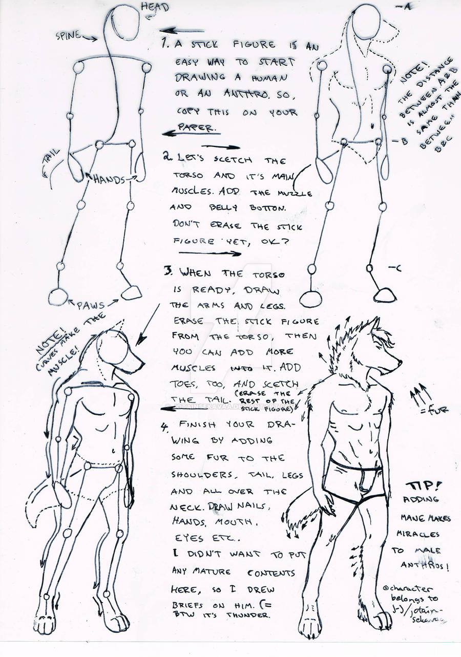 Anthro Wolf Tutorial Tutorial Male Wolf Anthro