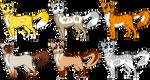 {Cats Adopt}