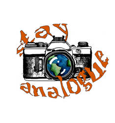 stay analogue
