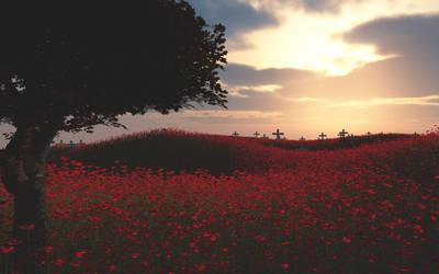 Rememberance Day by csbird
