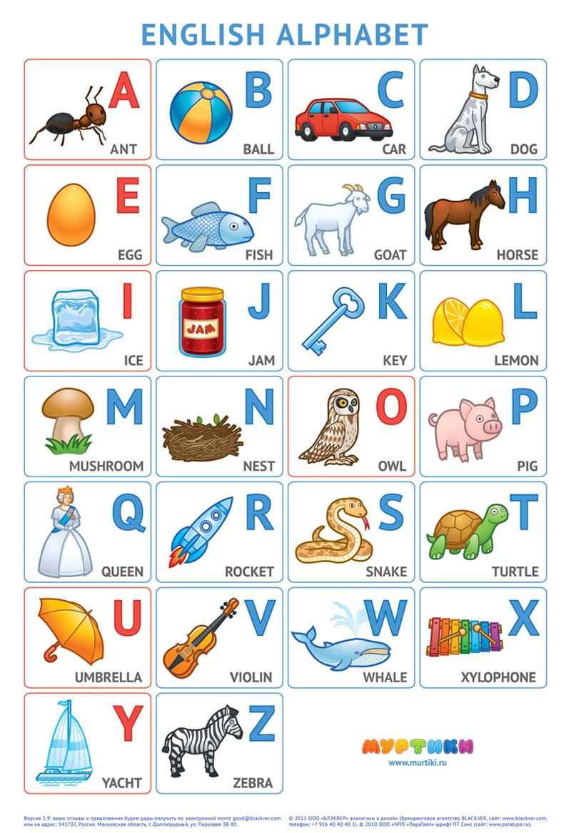 Книжка алфавит английский