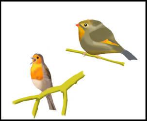Birds by Z-nab27