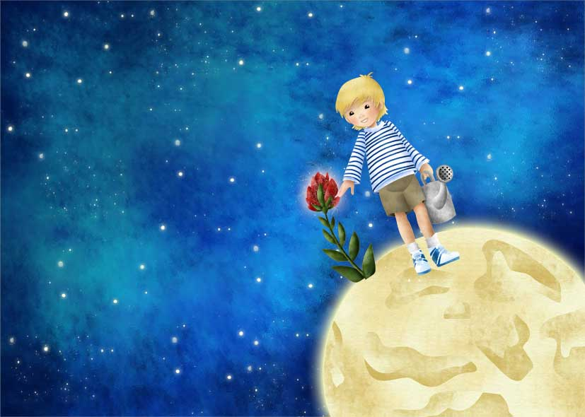 The Little Prince Favourites By R08r17 On DeviantArt