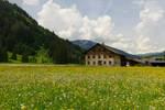 Tyrol by sannwald