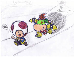 Bowser Jr. and toad