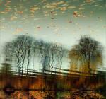 fall by ssuunnddeeww