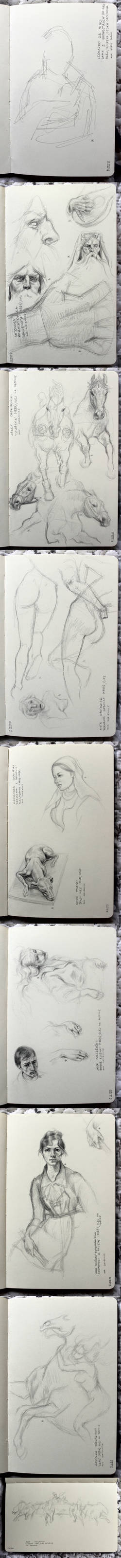Studies from National Museum in Krakow