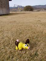 My Pokemon Ranch: Tepig by Taikxo