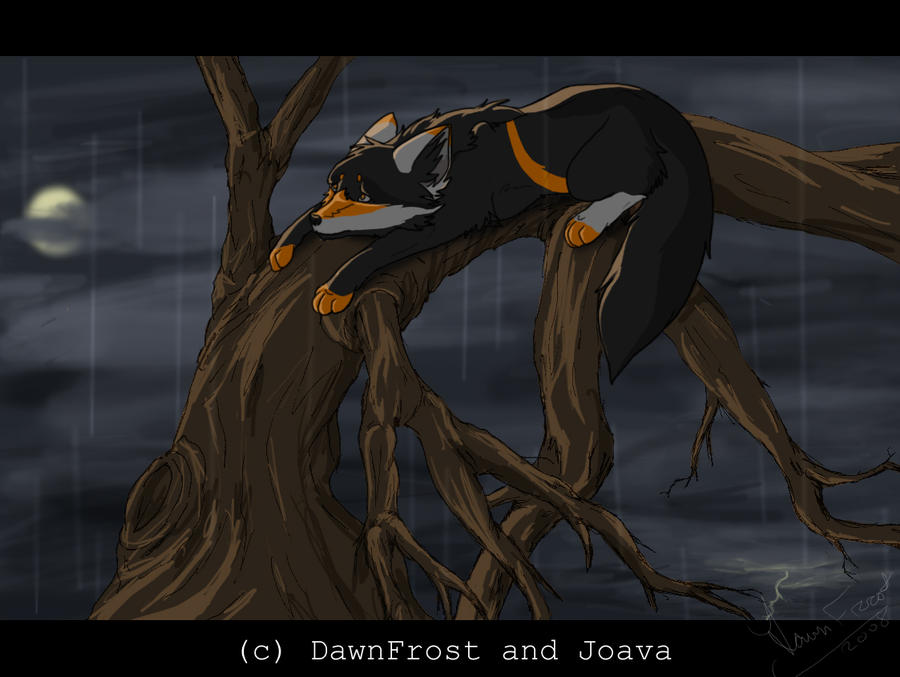 http://fc05.deviantart.net/fs25/i/2008/124/d/7/In_the_rain_by_DawnFrost.jpg