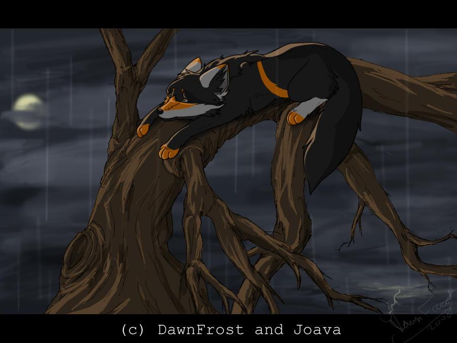 http://fc05.deviantart.net/fs25/i/2008/124/d/7/In_the_rain_by_DawnFrost.jpg