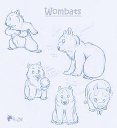 wombat concept 1 by DawnFrost