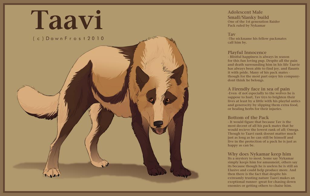 Taavi ref by DawnFrost