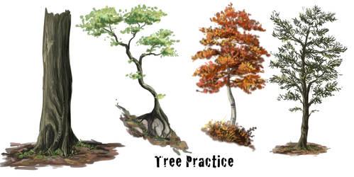 Tree practice and vid tut