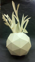 Dome Plant
