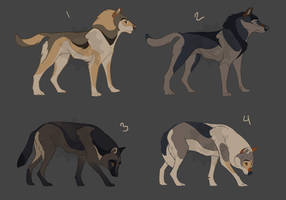 Wolf Adoptables
